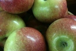 Æblekage shots
